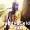 Introducing the Buddhafield
